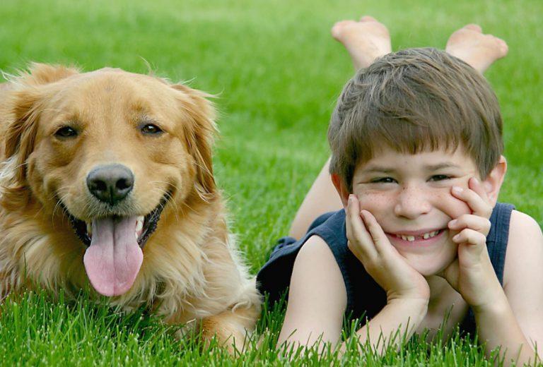 Ce qu'il faut savoir avant d'acheter un chien pour ses enfants